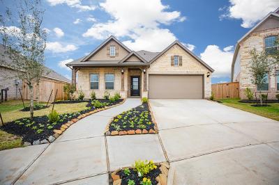 Missouri City Single Family Home For Sale: 2219 Amelia Way Drive