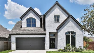 Pearland Single Family Home For Sale: 13929 Palm Ridge Lane