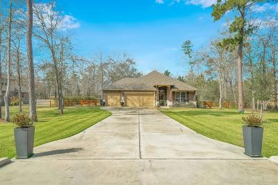 Conroe Single Family Home For Sale: 9118 Silver Back Trail
