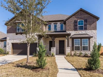 Pearland Single Family Home For Sale: 2007 Highland Meadows Drive