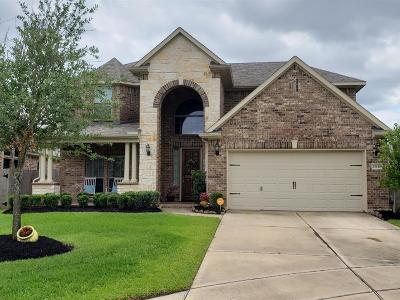 Rosharon Single Family Home For Sale: 13110 Spear Trail Court