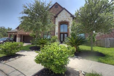 Missouri City Single Family Home For Sale: 7122 Angel Falls
