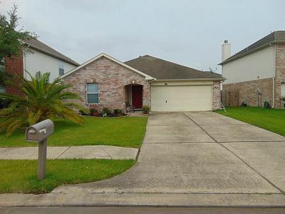 Houston Single Family Home For Sale: 4231 Barrow Ridge Lane