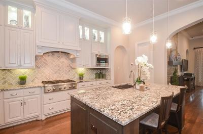 Sugar Land Single Family Home For Sale: 28 Quiet Vista Drive
