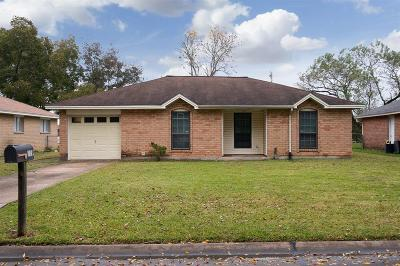 Friendswood Single Family Home For Sale: 119 Brigadoon Lane
