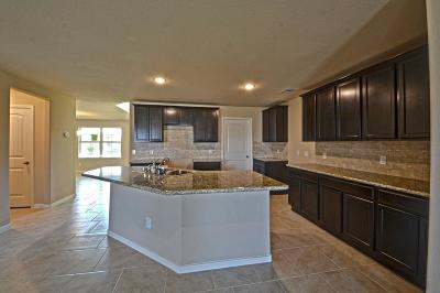 Single Family Home For Sale: 18219 Morningside Downs Way