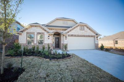 Tomball Single Family Home For Sale: 21731 Rose Maris Lane