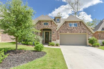 New Caney Single Family Home For Sale: 23507 Millbrook Drive
