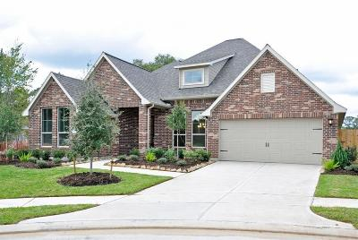 Tomball Single Family Home For Sale: 11106 English Holly Court