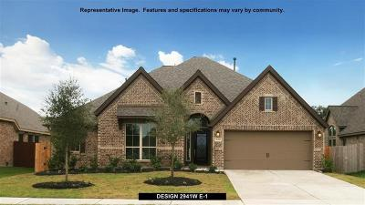 Tomball Single Family Home For Sale: 18919 Anne Blush Drive