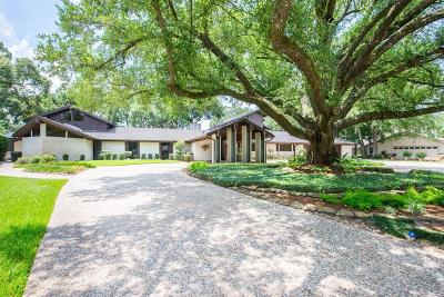 Houston Single Family Home For Sale: 14107 Bonney Brier Drive