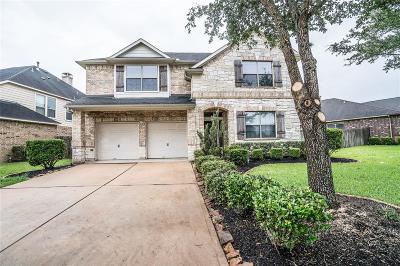 Sugar Land Single Family Home For Sale: 5442 Linden Rose Lane
