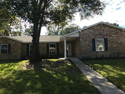 Humble Single Family Home For Sale: 20523 Atascocita Shores Drive
