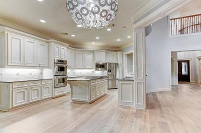 The Woodlands Single Family Home For Sale: 78 S Horizon Ridge Court