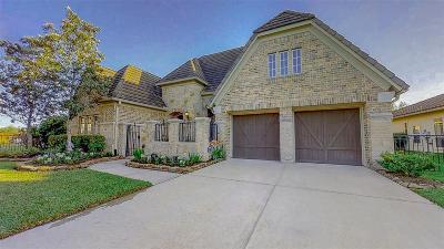 Sugar Land Single Family Home For Sale: 4307 Horizon View Circle