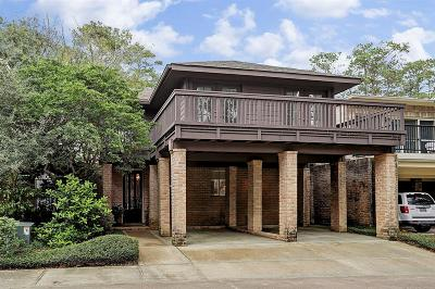 Houston Condo/Townhouse For Sale: 201 Vanderpool Ln #107