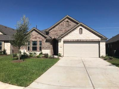 Katy Single Family Home For Sale: 23226 Twilight Oaks Ct