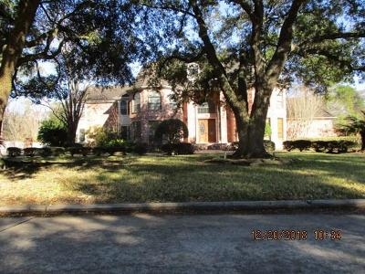 Single Family Home For Sale: 3130 Ivy Falls