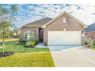 Conroe Single Family Home For Sale: 2252 Ivy Wall Drive