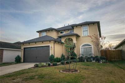 Katy Single Family Home For Sale: 19131 Cypress Rain Lane