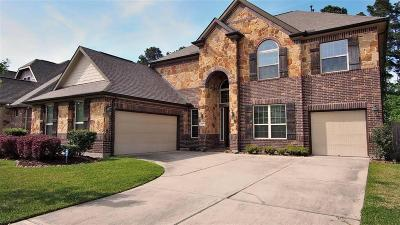 Montgomery County Single Family Home For Sale: 24987 Stratton Meadows Drive
