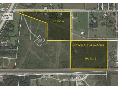 Friendswood Farm & Ranch For Sale: 1628 Lundy Lane