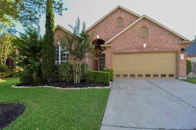 Katy Single Family Home For Sale: 25303 Mallard Bay Lane