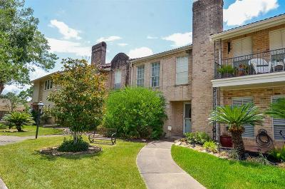 Fort Bend County Condo/Townhouse For Sale: 3343 Continental Drive
