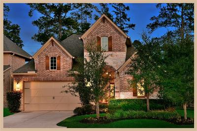 The Woodlands Single Family Home For Sale: 18 Sundown Ridge Place