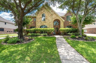 Houston Single Family Home For Sale: 18211 Treefork Lane