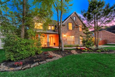 The Woodlands Single Family Home For Sale: 45 Acrewoods Place