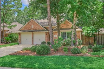 The Woodlands Single Family Home For Sale: 14 Tethered Vine Place