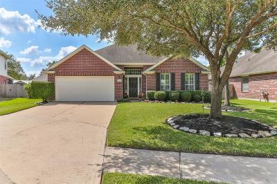 Houston Single Family Home For Sale: 10311 Amani Lane