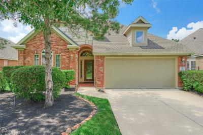 Spring Single Family Home For Sale: 18 Granite Path Place
