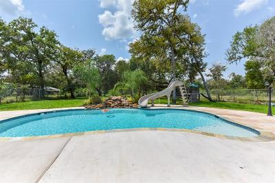 Rosharon Single Family Home For Sale: 16510 Mill Drive