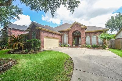 Sugar Land Single Family Home For Sale: 4431 Timber Hill Drive