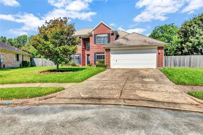 League City Single Family Home For Sale: 205 Hollander Court