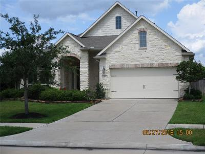 Friendswood Single Family Home For Sale: 701 Victory Terrace Lane