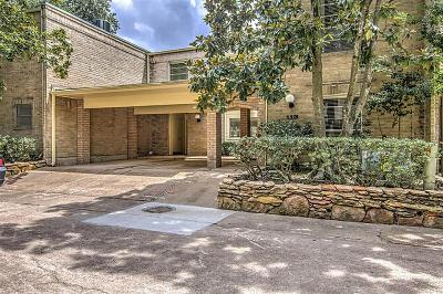 Houston Condo/Townhouse For Sale: 201 Vanderpool #113