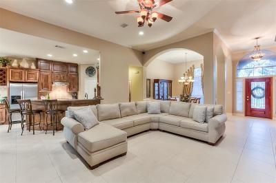 Montgomery Single Family Home For Sale: 9076 Grand Lake Estates Drive