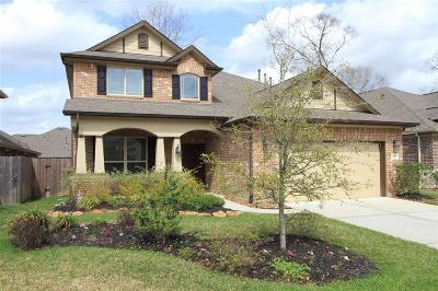 New Caney Single Family Home For Sale: 23415 Banks Mill Drive
