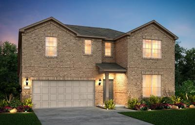Galveston County, Harris County Single Family Home For Sale: 9714 Hazel Fern Court