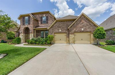Manvel Single Family Home For Sale: 3019 Wolfberry Drive
