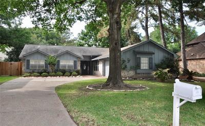 Houston Single Family Home For Sale: 6618 Greenvale Lane