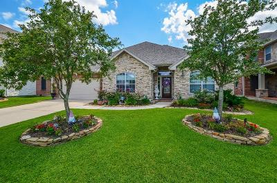 Tomball Single Family Home For Sale: 22419 Wenbury Drive Drive