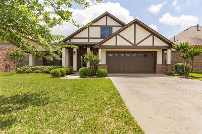Tomball Single Family Home For Sale: 11127 Ancient Lore Drive