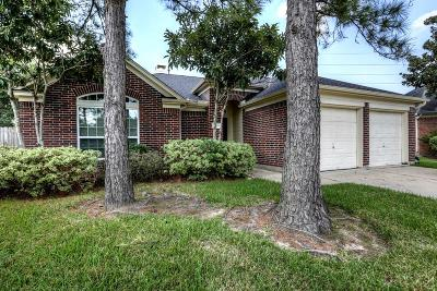 Pearland Rental For Rent: 3803 Summerfield Drive