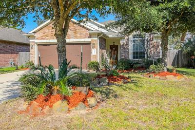 Porter Single Family Home For Sale: 21425 Naples Hollow Lane