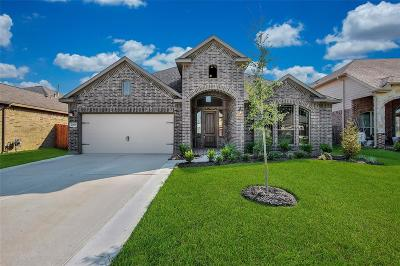 Tomball Single Family Home For Sale: 20819 Camelot Legend Drive