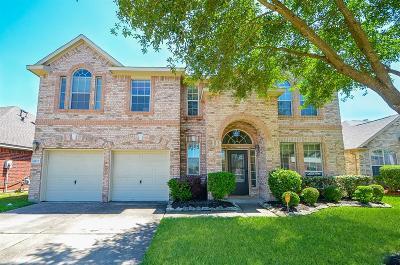 Houston Single Family Home For Sale: 8811 Petersburg Lane